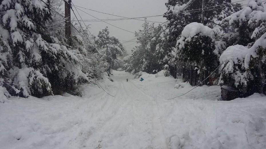 Cortes de electricidad en Bariloche por la intensa nevada