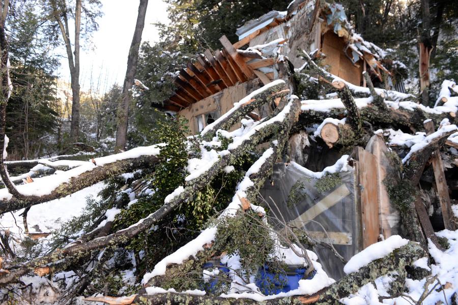 Historias de la nevada en Bariloche: un enorme coihue cayó y les partió la casa
