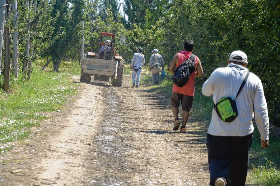 Detalles del protocolo que Río Negro estableció para trabajadores migrantes