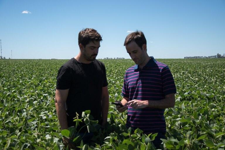 son-argentinos:-se-asociaron-con-la-nasa-y-desarrollaron-una-app-para-estimar-el-rinde-de-los-cultivos