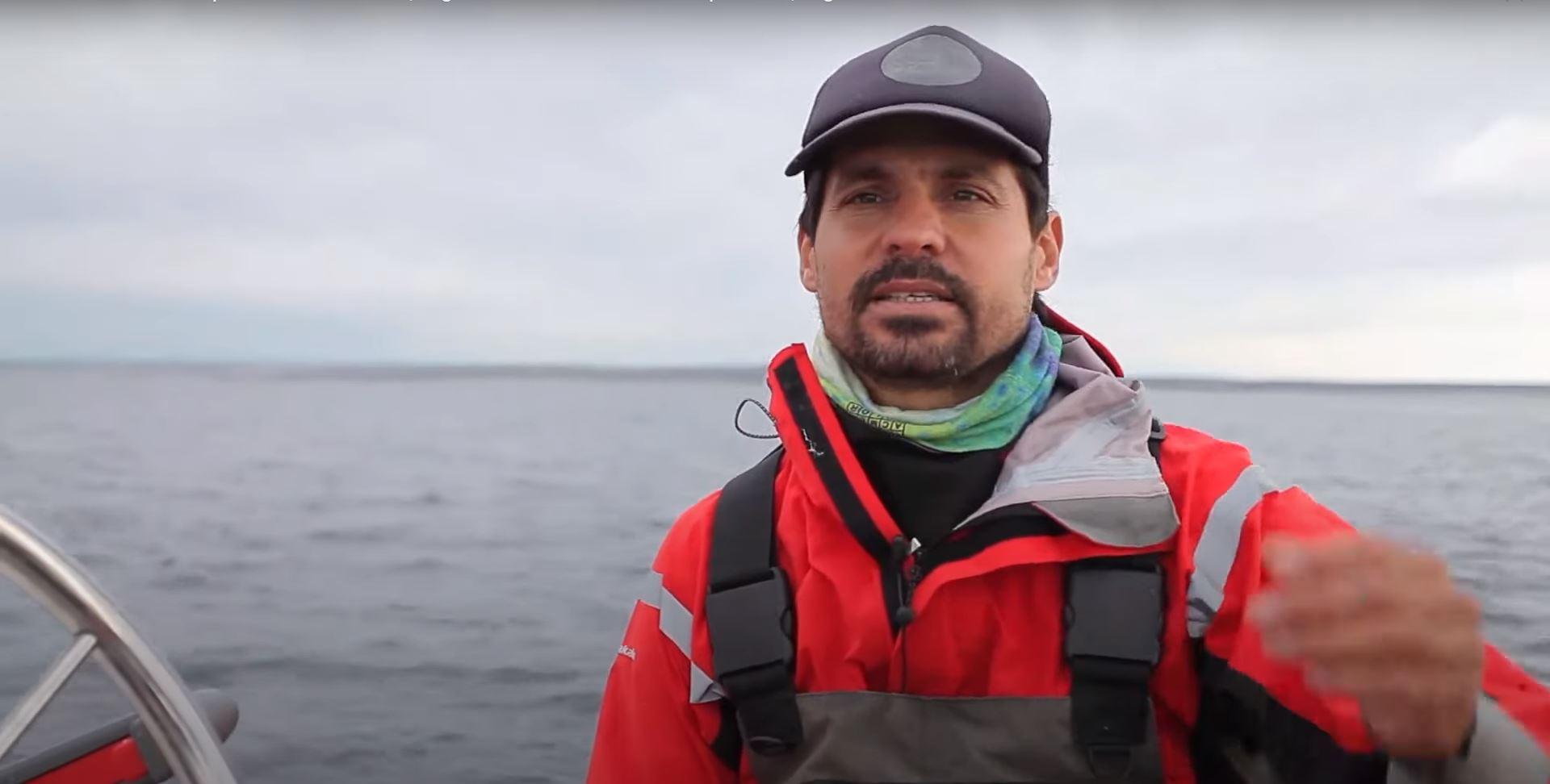 un-investigador-marino-de-neuquen-denuncio-matanza-de-tiburones-en-chubut