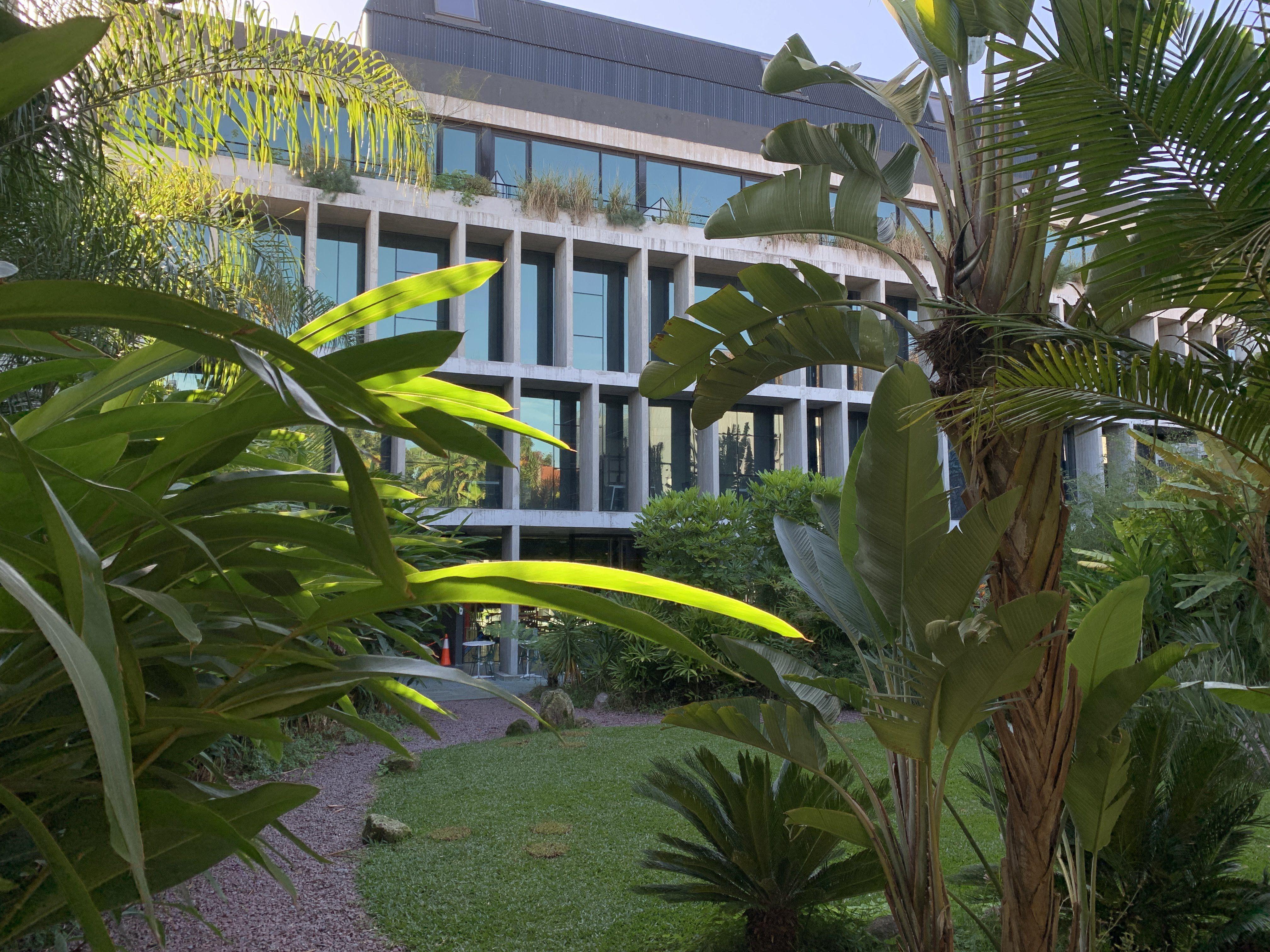 un-dia-en-un-espacio-de-cowork,-las-oficinas-flexibles-que-funcionan-como-laboratorios-de-ideas-y-entusiasmo